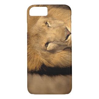Coque iPhone 7 L'Afrique, Kenya, masai Mara. Mâle de lion