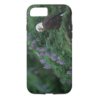 Coque iPhone 7 L'Alaska, île d'Unalaska Eagle chauve parmi Nootka