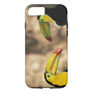 Coque iPhone 7 L'Amérique Centrale, Honduras. toucan