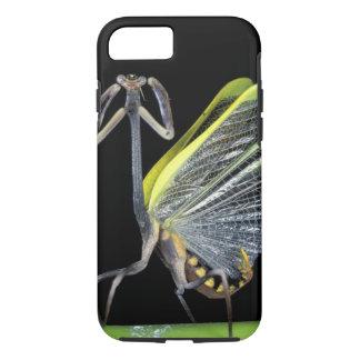 Coque iPhone 7 L'Amérique Centrale, Panama, île de Barro le