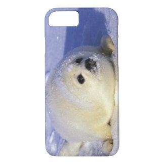 Coque iPhone 7 L'Amérique du Nord, Canada, Golfe de St Lawrence.