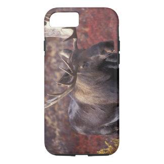 Coque iPhone 7 L'Amérique du Nord, Etats-Unis, Alaska, Denali NP.