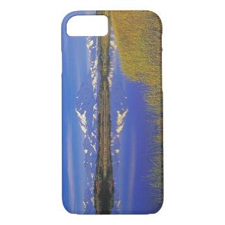 Coque iPhone 7 L'Amérique du Nord, Etats-Unis, Alaska, Denali NP,