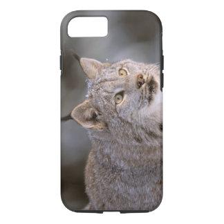 Coque iPhone 7 L'Amérique du Nord, Etats-Unis, Alaska, Haines.