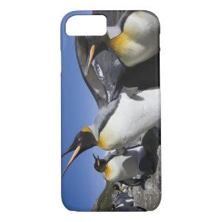 Coque iPhone 7 L'Antarctique, île du sud de la Géorgie (R-U), roi