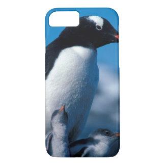Coque iPhone 7 L'Antarctique, îles Sous-Antarctiques, sud