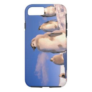 Coque iPhone 7 L'Antarctique, territoire antarctique australien,