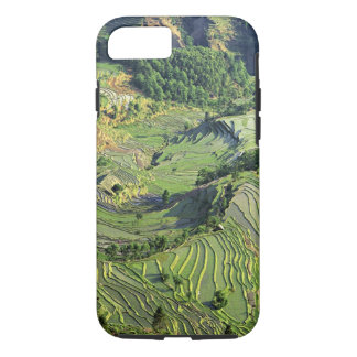 Coque iPhone 7 L'Asie, Chine, Yunnan, Yuanyang. Motif de vert