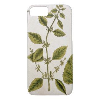 """Coque iPhone 7 Le baume, plaquent 27 """"d'un de fines herbes"""