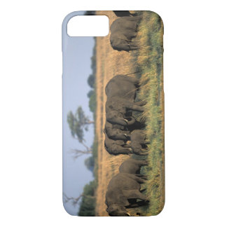Coque iPhone 7 Le Botswana, parc national de Chobe, troupeau