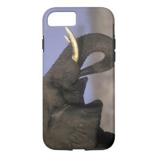 Coque iPhone 7 Le Botswana, réservation de jeu de Moremi,