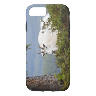 Coque iPhone 7 Le Canada, Alberta, parc national de jaspe,