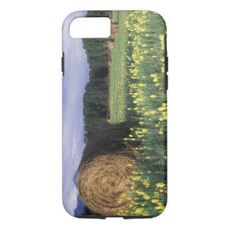 Coque iPhone 7 Le Canada, Colombie-Britannique, Kitwanga. Jaune