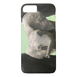 Coque iPhone 7 Le Kenya :  Réservation de jeu de Mara de masai