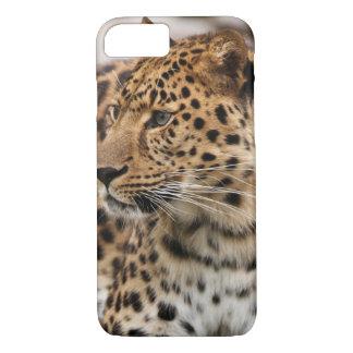 Coque iPhone 7 Le léopard