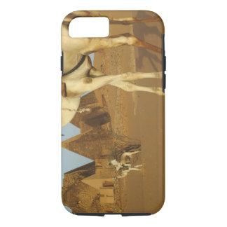Coque iPhone 7 Le Soudan, nord (Nubia), pyramides de Meroe avec