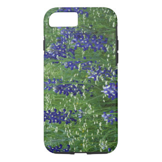 Coque iPhone 7 Le Texas, lac Buchanan. Bluebonnet de Texas et