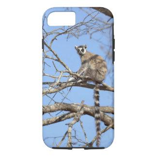 Coque iPhone 7 lémur Anneau-coupé la queue (catta de lémur)