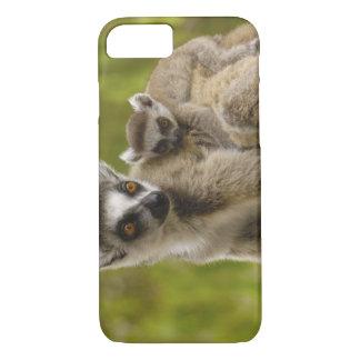 Coque iPhone 7 lémurs Anneau-coupés la queue (catta de lémur)