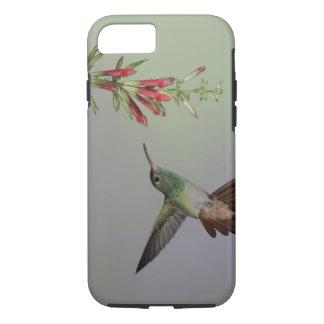 Coque iPhone 7 L'Equateur, loge d'oiseau de Tandayapa.