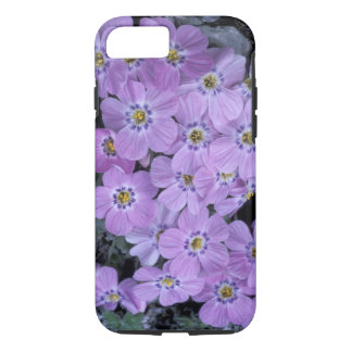 Coque iPhone 7 Les Etats-Unis, Alaska, NWR arctique. Phlox