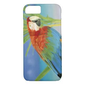 Coque iPhone 7 Les Etats-Unis, Hawaï. Perroquet