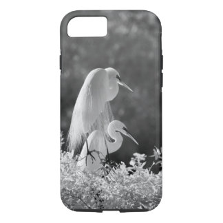 Coque iPhone 7 Les Etats-Unis, la Floride, grand infrarouge de