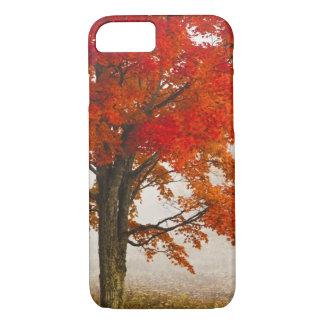 Coque iPhone 7 Les Etats-Unis, la Virginie Occidentale, Davis.