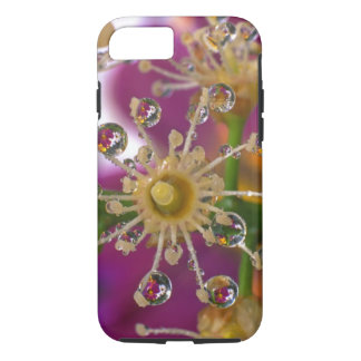Coque iPhone 7 Les Etats-Unis, Orégon, Portland. Les fleurs de