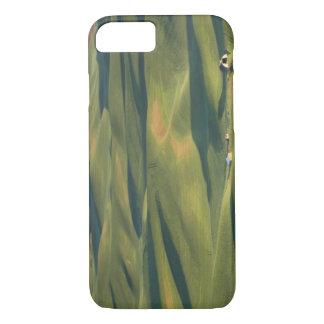 Coque iPhone 7 Les Etats-Unis, WA, Whitman Cie., champs de ferme