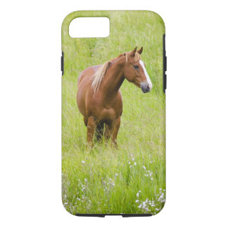 Coque iPhone 7 Les Etats-Unis, Washington, champ de cheval au