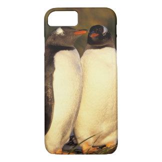 Coque iPhone 7 Les îles Malouines. Pingouins de Gentoo.