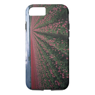 Coque iPhone 7 Les tulipes roses et rouges lumineuses rougeoient