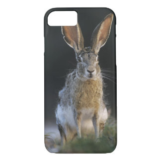 Coque iPhone 7 Lièvre à queue noire, californicus de Lepus, 2