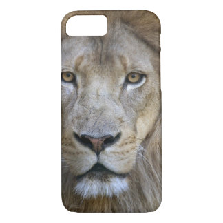 Coque iPhone 7 Lion de mâle adulte au zoo de Sacramento, CA