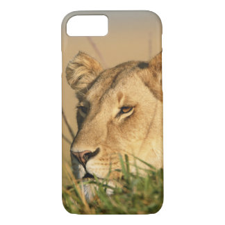 Coque iPhone 7 Lion femelle
