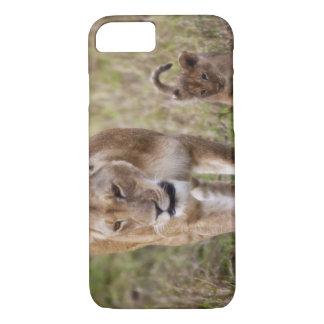 Coque iPhone 7 Lion femelle avec l'petit animal (Panthera Lion)