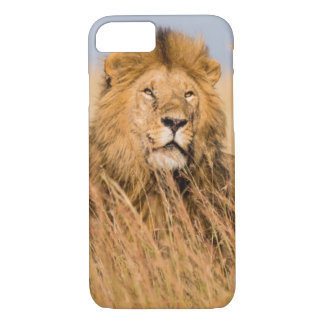 Coque iPhone 7 Lion masculin caché dans l'herbe