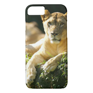 Coque iPhone 7 Lions