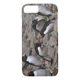 Coque iPhone 7 L'Océan Atlantique, Îles Falkland. Rockhopper 2