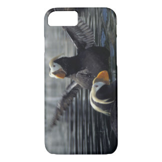 Coque iPhone 7 Macareux tuftés de l'Alaska