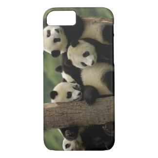 Coque iPhone 7 Melanoleuca d'Ailuropoda de bébés de panda géant)