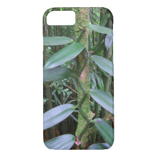 Coque iPhone 7 Orchidée de vanille sauvage