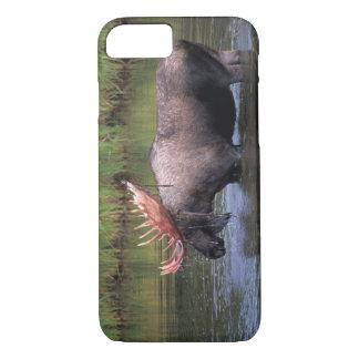 Coque iPhone 7 orignaux, taureau dans un étang de bouilloire et