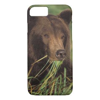 Coque iPhone 7 ours brun, arctos d'Ursus, ours gris, Ursus 7