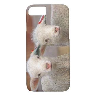 Coque iPhone 7 Paires d'agneaux commerciaux de Targhee