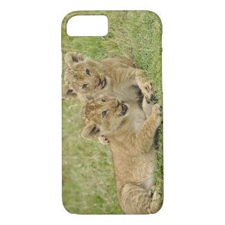 Coque iPhone 7 Paires de petits animaux de lion jouant, jeu de