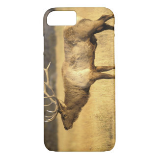 Coque iPhone 7 Parc national des Etats-Unis, Wyoming,