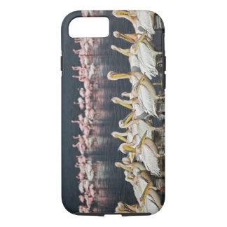 Coque iPhone 7 Pélicans blancs, onocrotalus de Pelecanus, lac