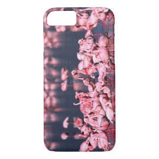 Coque iPhone 7 Peu de flamants (mineur de Phoeniconaias),